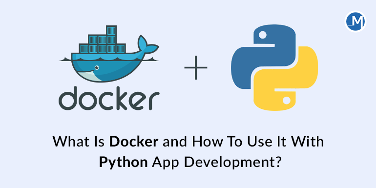 What Is Docker and How To Use It With Python App Development